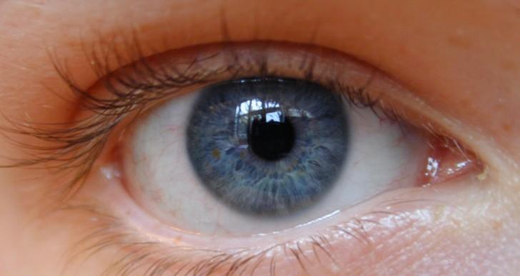 Los ciegos podrán volver a ver