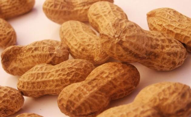 Nuevo tratamiento para la alergia al maní