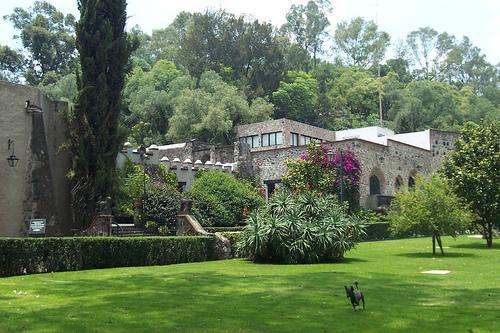 Festejará en grande el Museo Dolores Olmedo 20 años de existencia