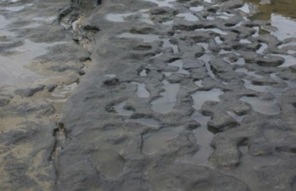 Las huellas humanas más antiguas fuera de África