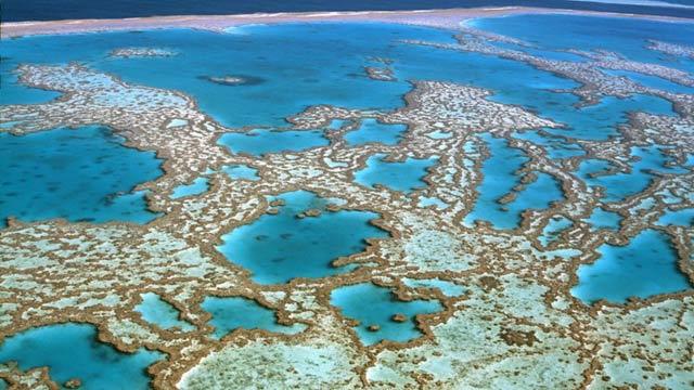 Autorizan vertido de barro cerca de la Gran Barrera de Coral