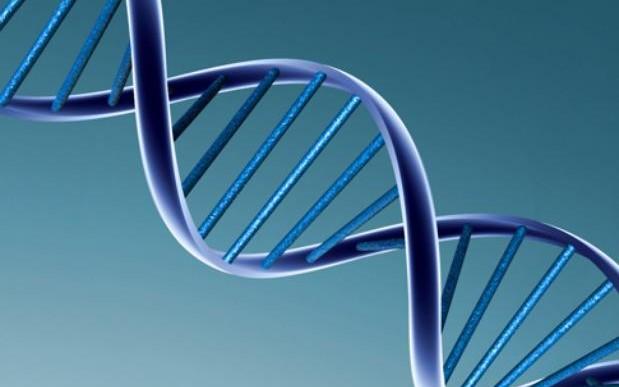 ¿Sabes si tienes una enfermedad genética?