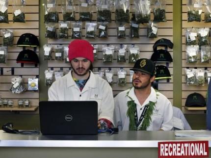 Empleos generados por la marihuana
