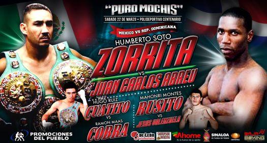 Este sábado, pelea de Merengue contra Zorrita