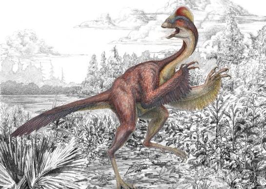 Descubren a nuevo dinosaurio: el pollo del infierno