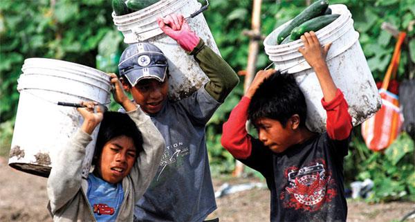 Algunos niños en México trabajan más de 35 hrs semanales