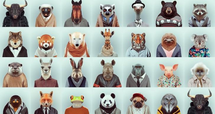 Los animales también pueden vestir con estilo