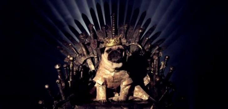 ¿Ya viste Game of Thrones en versión canina?