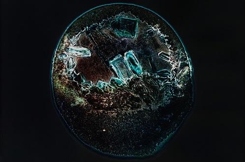 Las drogas son bellas debajo del microscopio