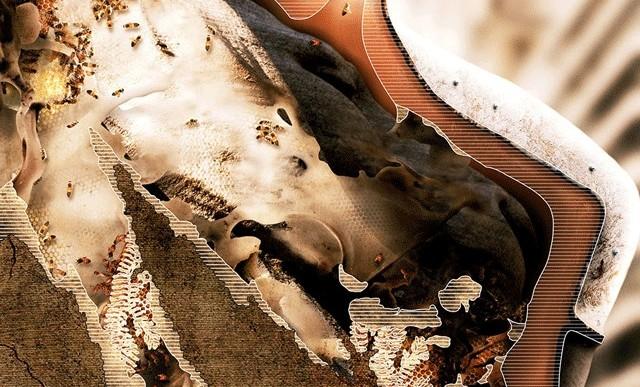 Algún día las abejas repararán cosas para nosotros