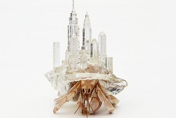 Artista imprime conchas en forma de ciudad para cangrejos ermitaños