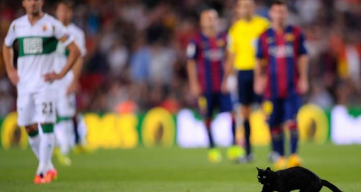 Un gato interrumpe el partido de Barcelona-Elche