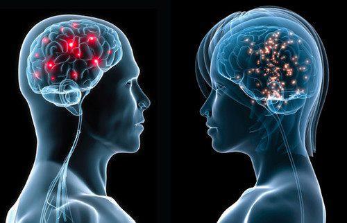 Hay diferencias importantes entre los cerebros de hombres y mujeres