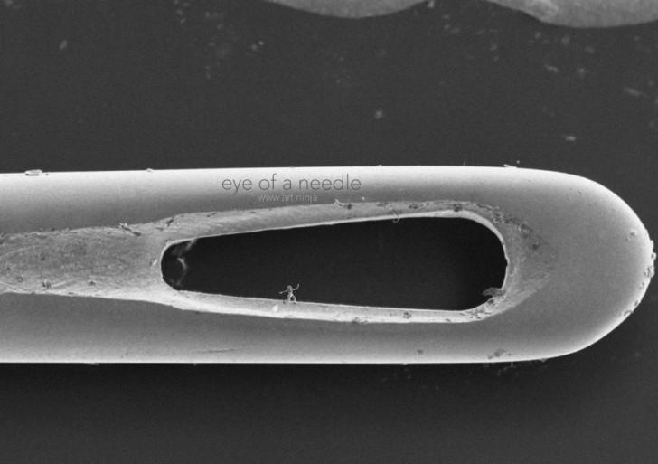 Estas esculturas sólo las puedes ver a través de un microscopio