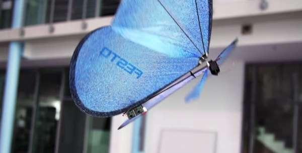 Te presentamos a estas bellas mariposas robóticas