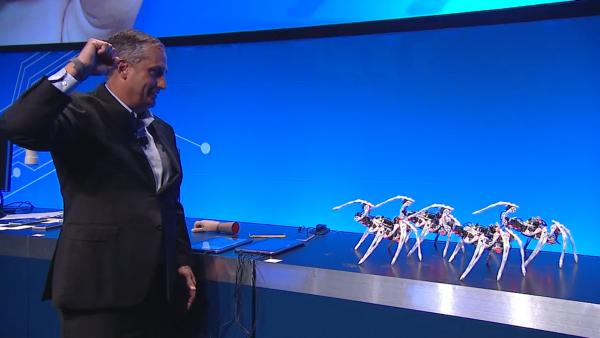 Estas arañas pueden ser controladas por puros gestos con la mano