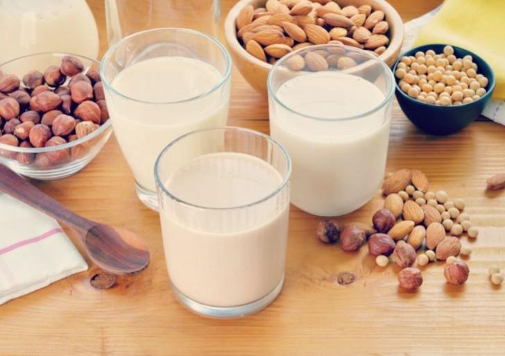 Conoce los diferentes tipos de leche vegetal y aprende a prepararlas en casa