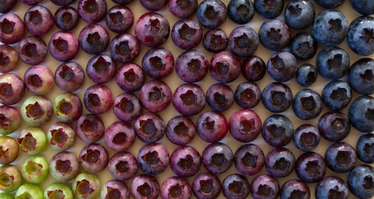 Brittany Wright captura fruta y verduras con gradientes coloridos