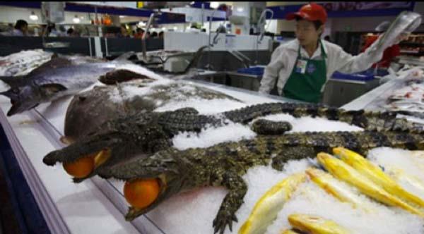 Mira lo que venden en Walmart en China