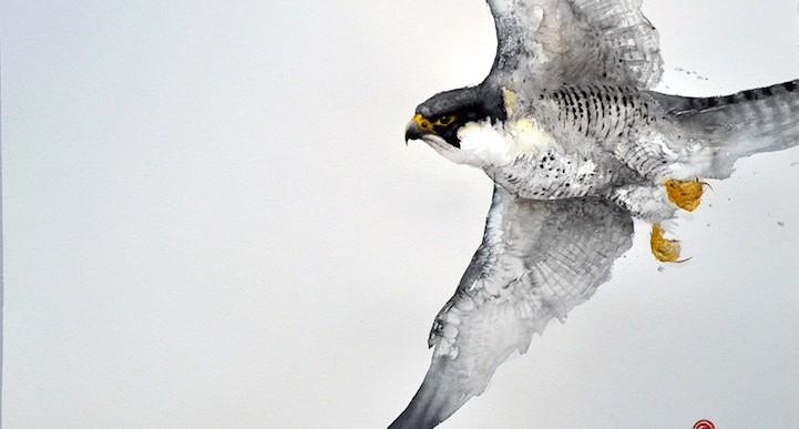 Este artista usa pinceles de caligrafía para pintar increíbles aves