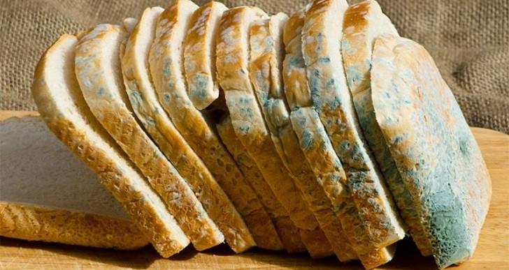 ¿Puedes comer alimentos con hongos?