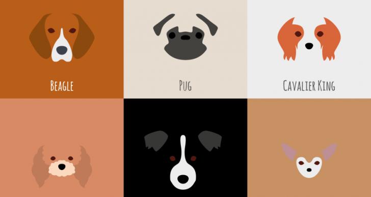 Hermosas ilustraciones minimalistas de varias razas de perro