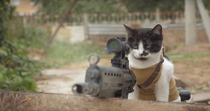 Los gatos serán los que sobrevivirán a la apocalipsis zombie
