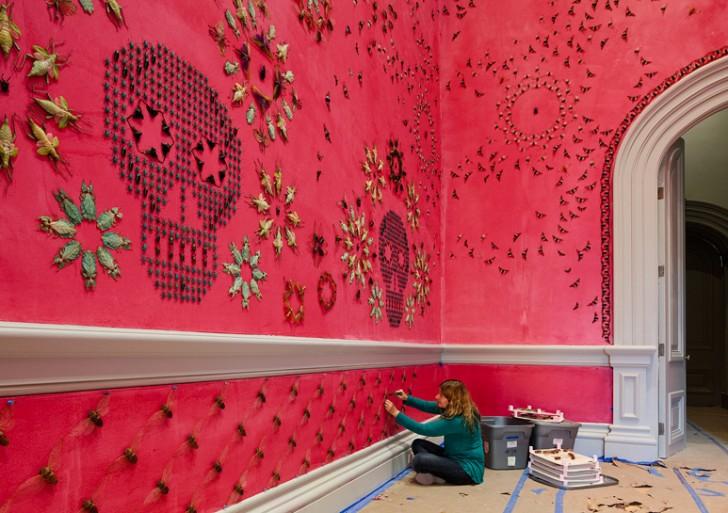 ¿Entrarías a este cuarto con más de 5,000 insectos?