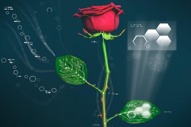 Esta es la primera planta cibernética del mundo