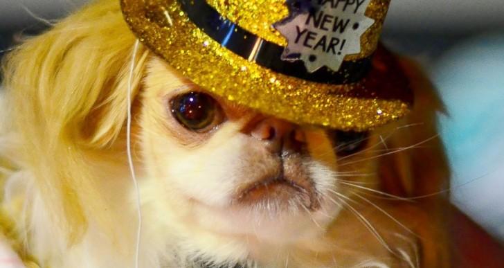 Nadie sabe festejar el año nuevo como estas personas