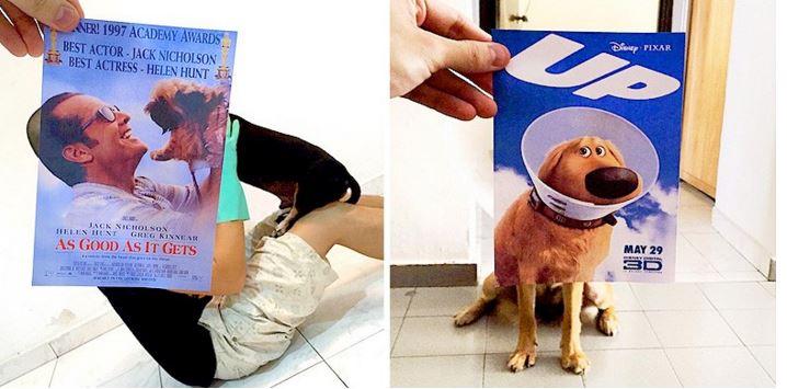 Si los perros gobernaran Hollywood, así se verían los pósters de las películas