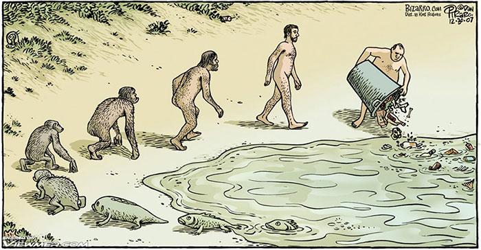 Los giros inesperados que ha hecho la evolución