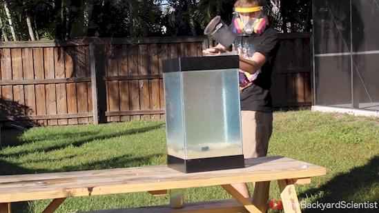 Mira lo que pasa cuando viertes aluminio fundido en una pecera