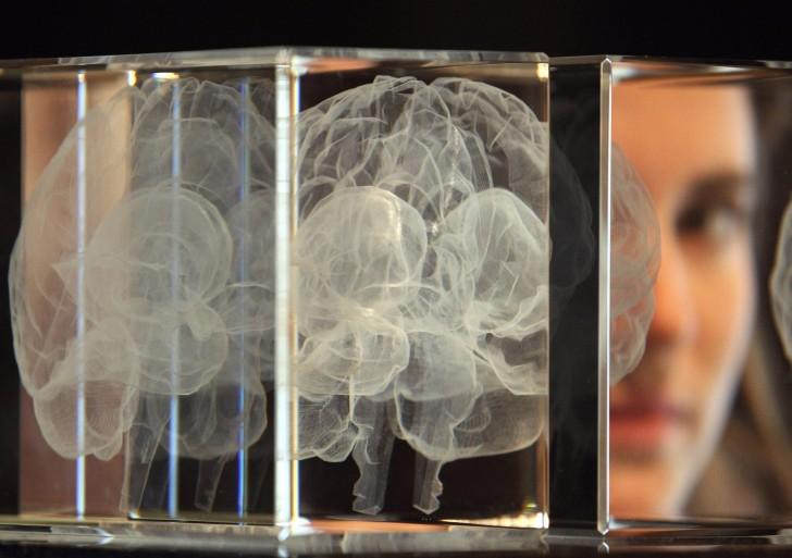7 mitos sobre el cerebro que has creído toda tu vida