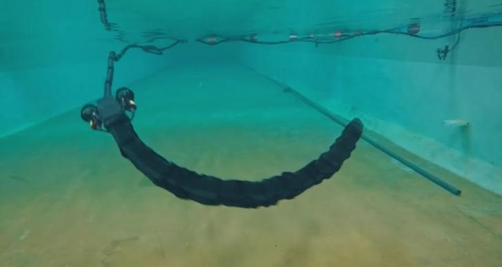 Este serpiente robótico puede desplazarse donde quiera debajo del agua