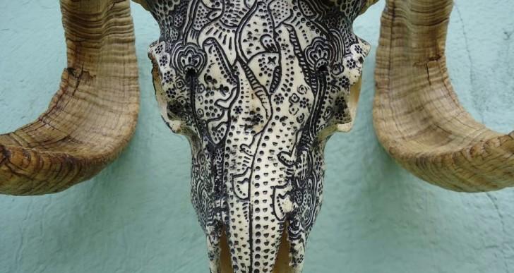 Este artista convierte cráneos de animales en elaboradas obras de arte