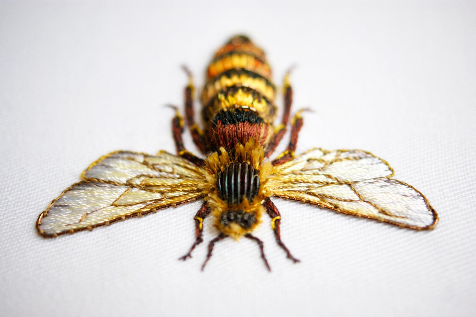 laura-bee-2
