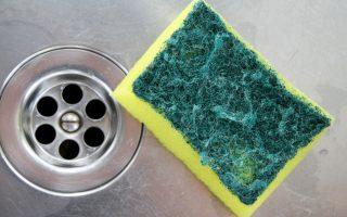 Cómo limpiar la esponja de tu cocina