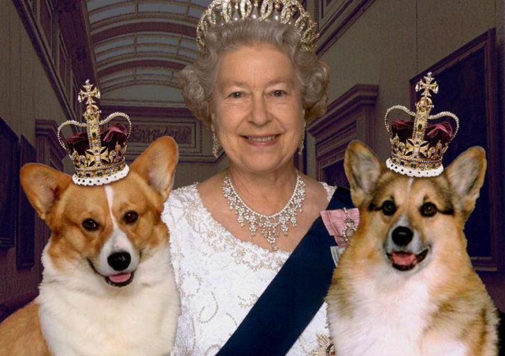Mascotas de la realeza y líderes mundiales