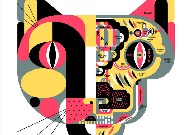 Sistemas complejos visualizados por Raymond Biesinger