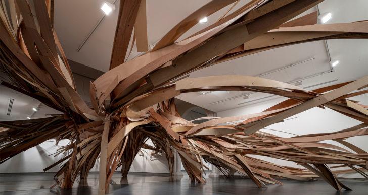 Grandes tiras de madera forman árboles y raíces