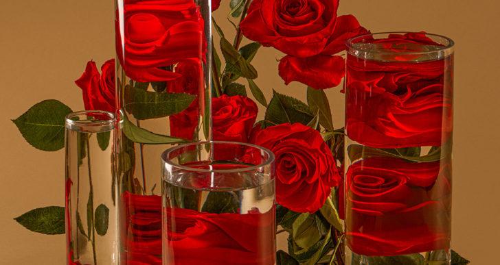 Vasos de agua distorsionan tu perspectiva de estas flores
