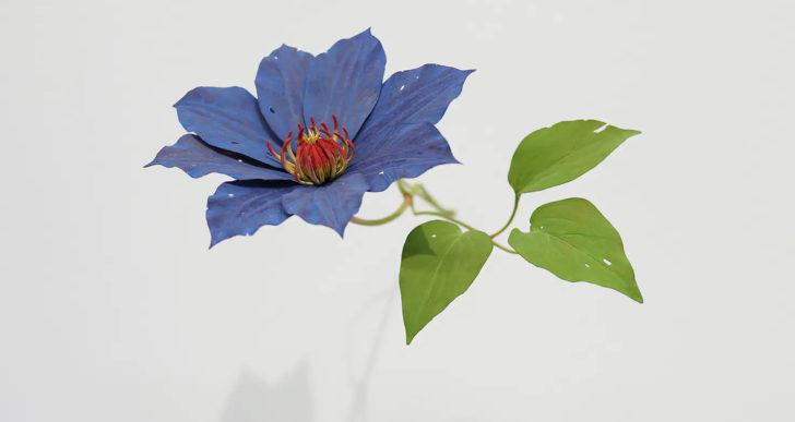 Delicadas flores de madera crecen en pequeñas grietas