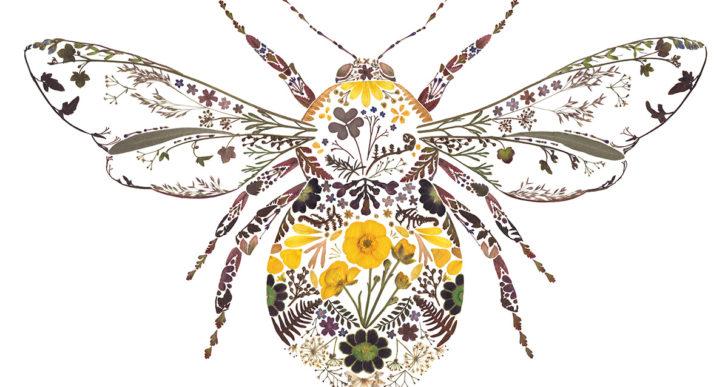 Botánica seca y prensada para crear delicadas composiciones de fauna