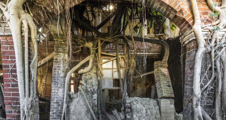 La naturaleza retoma estos edificios abandonados