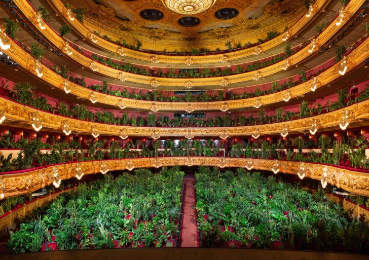 Un concierto se lleva a cabo con un público de 2,292 plantas