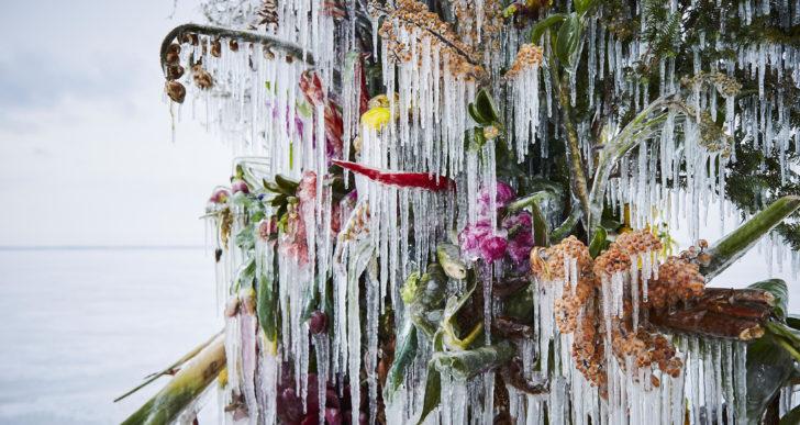 Los arreglos florales congelados de Azuma Makoto