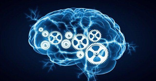 Cómo mejorar el desempeño de tu cerebro sin caer en engaños