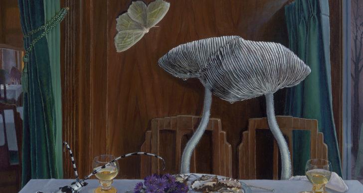 Escenas íntimas de las vidas de hongos por Bella Ormseth